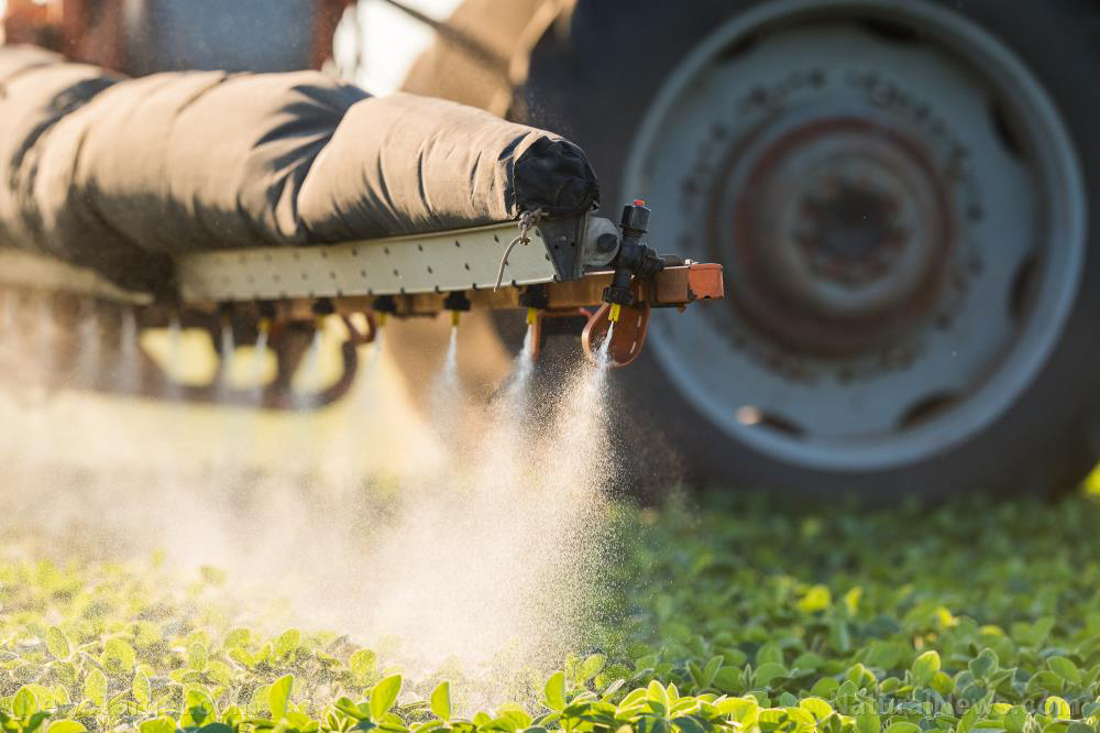 Chemicals in organophosphate pesticides cause brain damage: Study