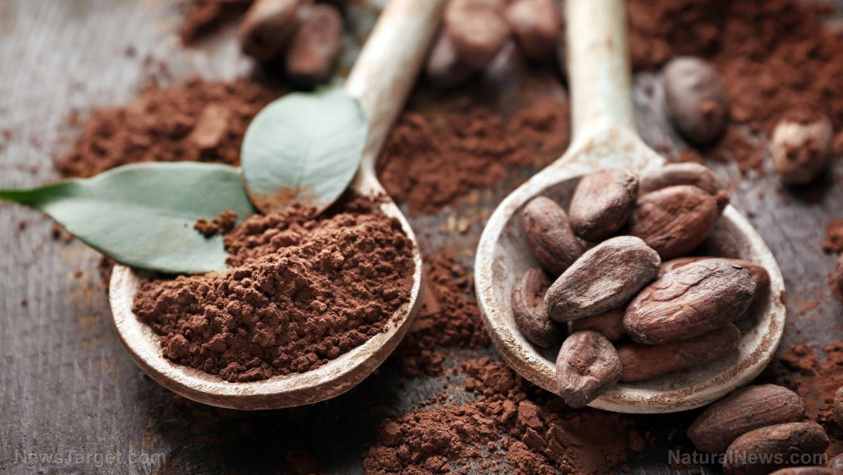 A cup of goodness: get to know the 8 surprising health benefits of organic cocoa