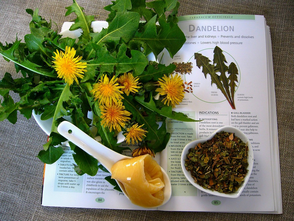 Which herbal remedy is best for you?