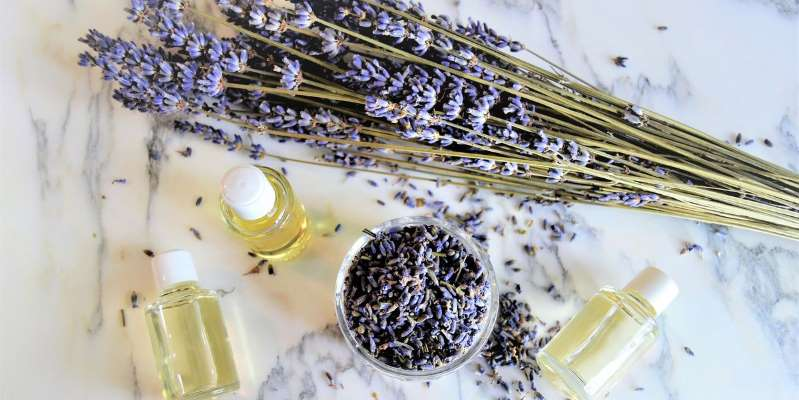The Science Behind Aromatherapy