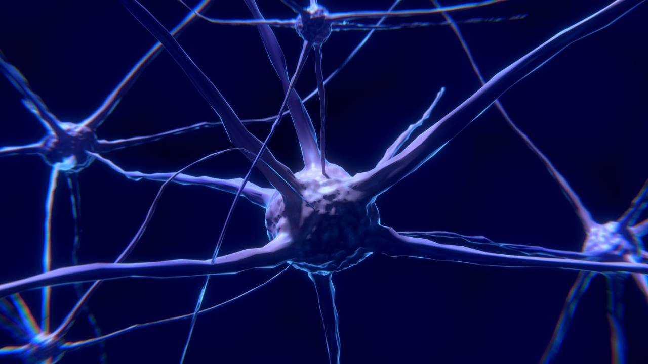 Study finds psychedelic DMT may be a powerful nootropic