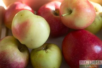 Apples stimulate production of new brain cells