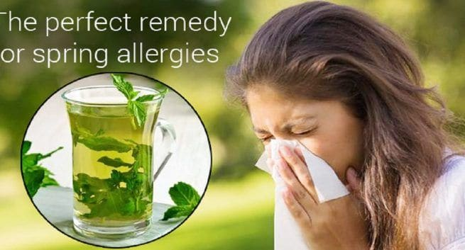 Pudina for spring allergies: 10 reasons why you must include it in your diet now