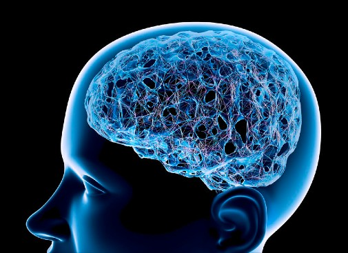 New study showing how brain retrieves facts and personal experiences may help people with memory disorders