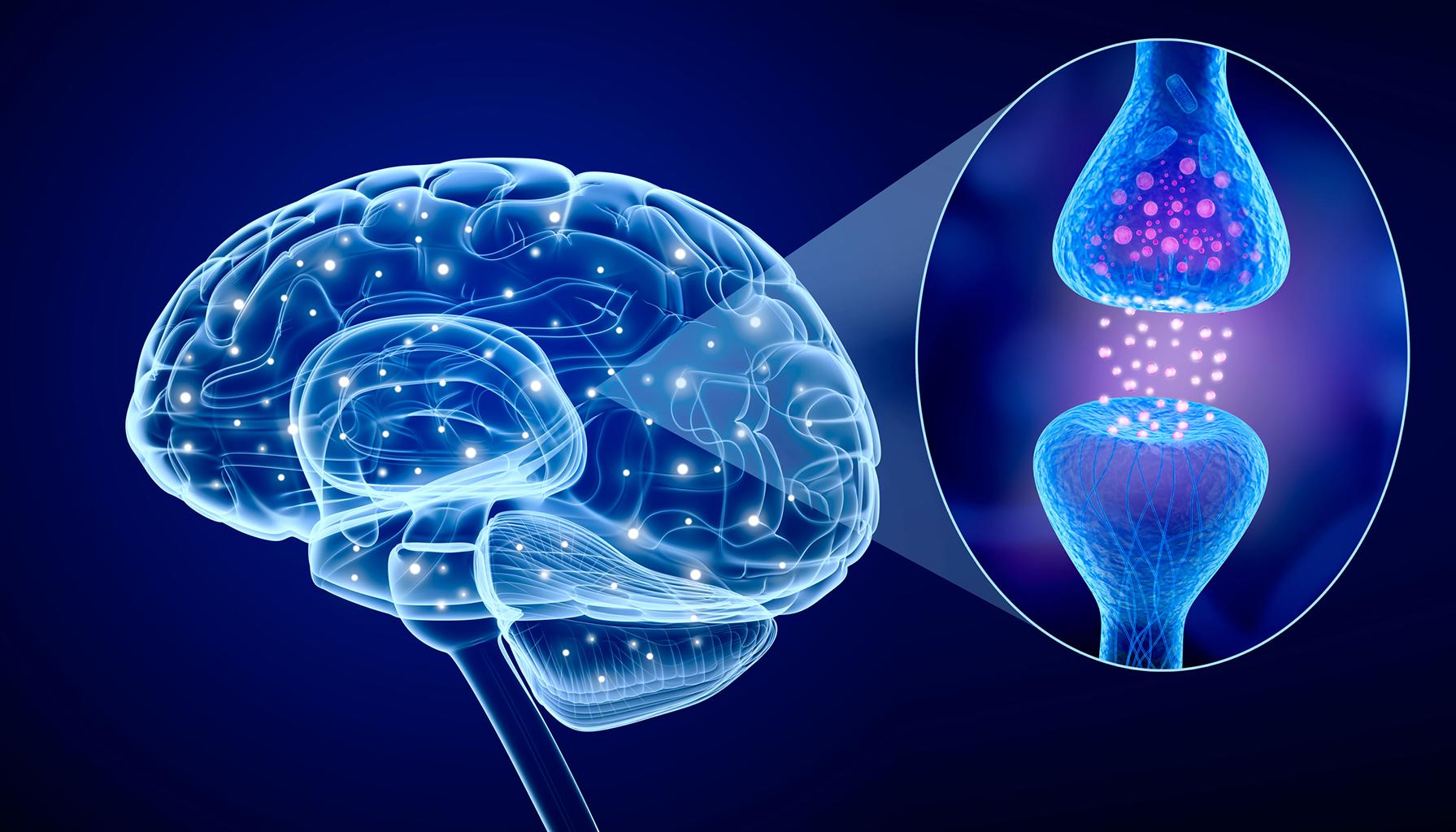 Mindblowing: advances in brain tech spur push for 'neuro-rights'