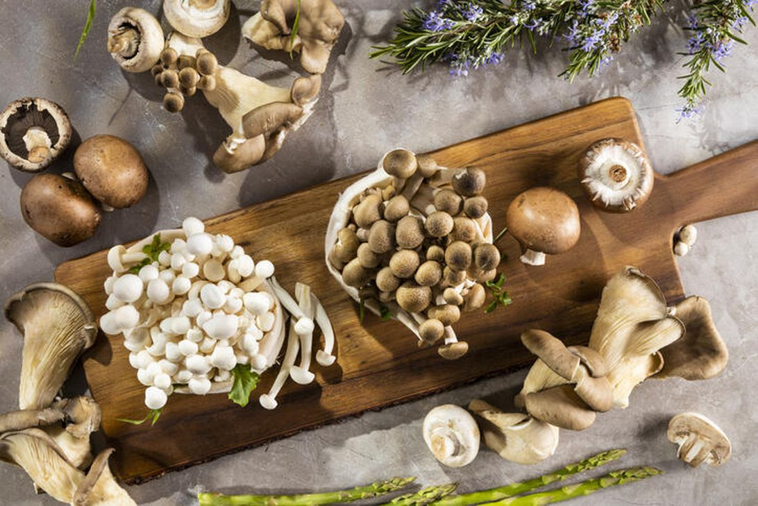 Do medicinal mushrooms really work? What you need to know about lion's mane, reishi and more